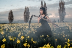 April-Daffodils-Final-Edit-2017-084