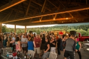 Eagle-Haven-Winery-Rivertalk-Summer-Concerts-2015-Russell-Chandler-Photographer-28