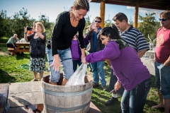 Eagle-Haven-Winery-Crush-2015-Russell-Chandler-Photographer-006
