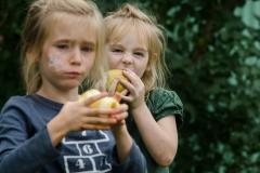 Skagit Festival of Family Farms 2014
