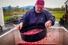 Eagle-Haven-Winery-Production-2014-2015-2016-Russell-Chandler-Photographer-030