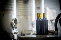 Eagle-Haven-Winery-Production-2014-2015-2016-Russell-Chandler-Photographer-072