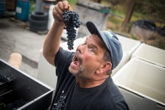 Eagle-Haven-Winery-Production-2014-2015-2016-Russell-Chandler-Photographer-147