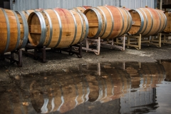 Eagle-Haven-Winery-Production-2014-2015-2016-Russell-Chandler-Photographer-154