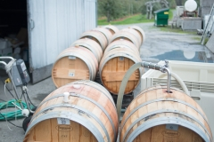 Eagle-Haven-Winery-Production-2014-2015-2016-Russell-Chandler-Photographer-157