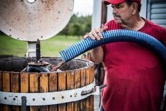 Eagle-Haven-Winery-Production-2014-2015-2016-Russell-Chandler-Photographer-275