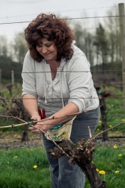 Eagle-Haven-Winery-Vineyard-Pruning-2015-Russell-Chandler-Photographer-019