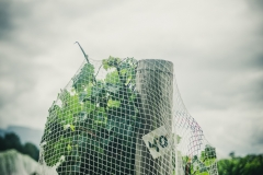 Eagle-Haven-Winery-Vineyard-Netting-August-2015-Russell-Chandler-Photographer-010