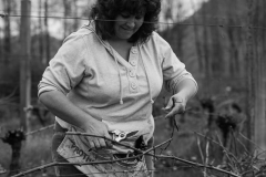 Eagle-Haven-Winery-Vineyard-Pruning-2015-Russell-Chandler-Photographer-010