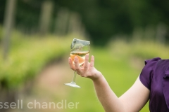 Jennifer in the Vineyard
