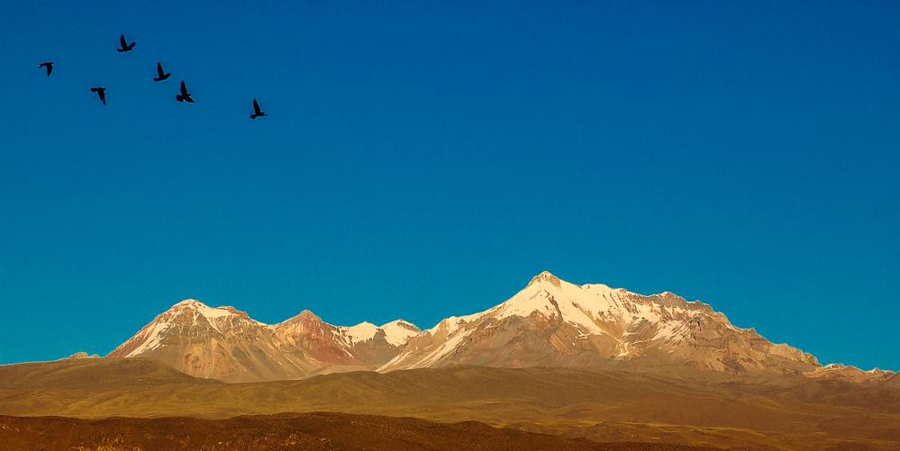 Altiplano, Peru